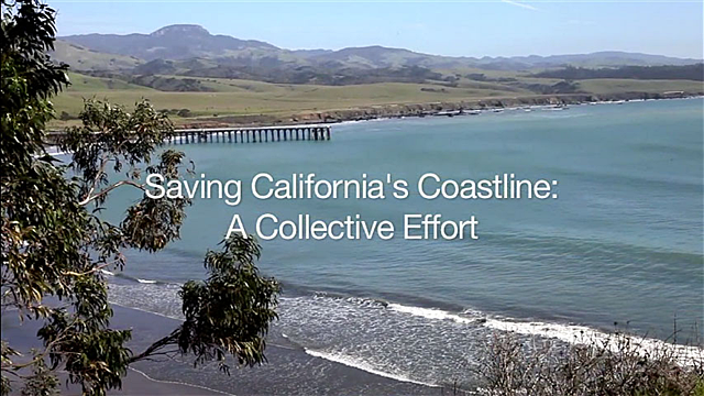 Saving California's Coastline Poster